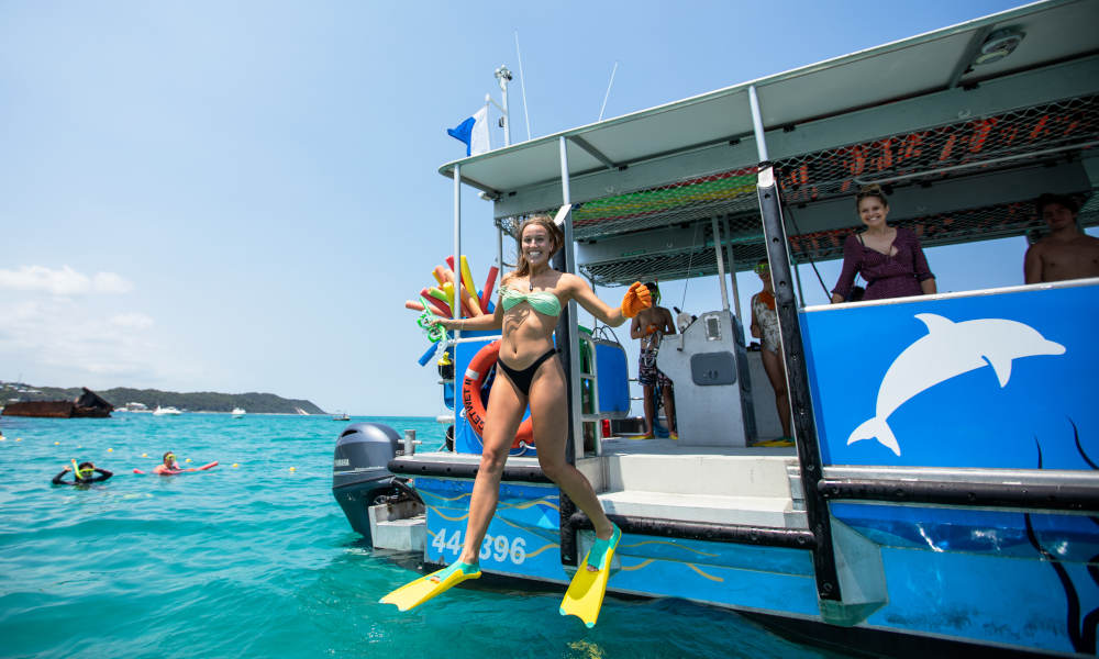 Moreton Island Dolphin and Tangalooma Wrecks Snorkelling Tour including Lunch