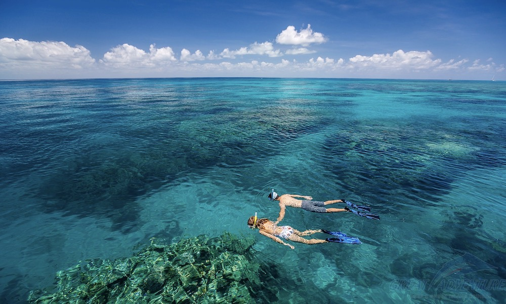 Great Barrier Reef Cruise + Green Island 1 Day Tour