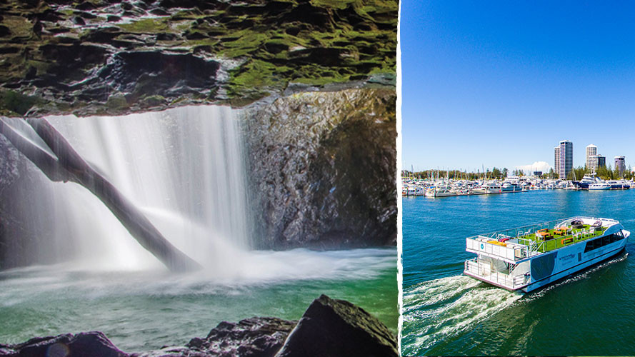 Gold Coast Hinterland Tour & Sightseeing Cruise Package