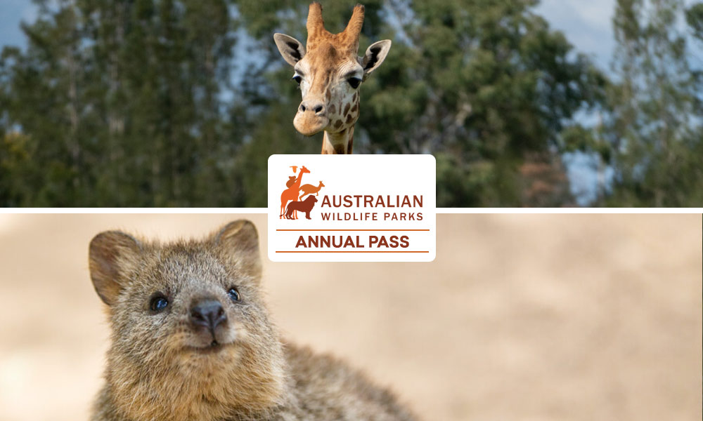 Featherdale Wildlife Park Entry Tickets