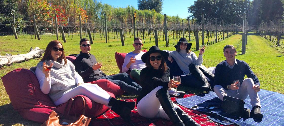 Tamborine Guided Wine Tours from Brisbane