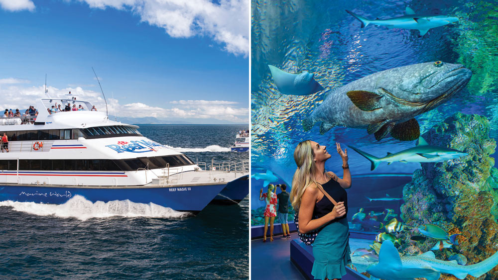 Great Barrier Reef Cruise with FREE Cairns Aquarium Entry