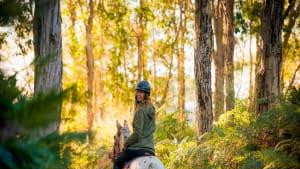 Horse Trail Ride, 60 Minutes - Byron Bay