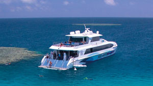 Great Barrier Reef Dive and Snorkel Adventure - Cairns