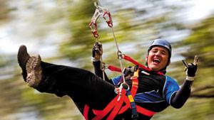 Illawarra Fly Treetop Zipline Adventure
