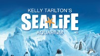 Kelly Tarltons SEA LIFE Aquarium